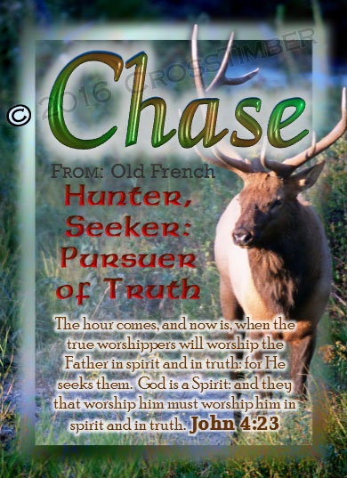PC-AN12, Name Meaning Card, Wallet Sized, with Bible Verse chase buck deer elk hunt hunter wild