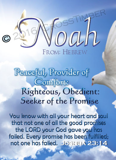 PC-AN13, Name Meaning Card, Wallet Sized, with Bible Verse noah dove peace