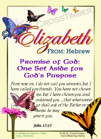 PC-BF04, Name Meaning Card, Wallet Sized, with Bible Verse butterfly  elizabeth