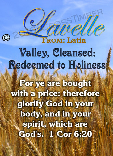 PC-GR05, Name Meaning Card, Wallet Sized, with Bible Verse, personalized, lavelle grain field harvest