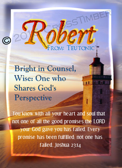 PC-LH14, Name Meaning Card, Wallet Sized, with Bible Verse, personalized, lighthouse light, ocean robert bob