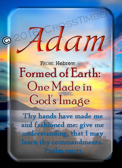 PC-SC32, Name Meaning Card, Wallet Sized, with Bible Verse, personalized, adam, man clouds sunset