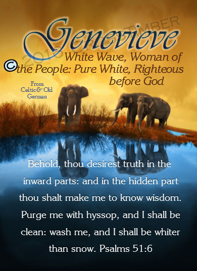 PC-SC47, Name Meaning Card, Wallet Sized, with Bible Verse, personalized, genevieve elephant world water