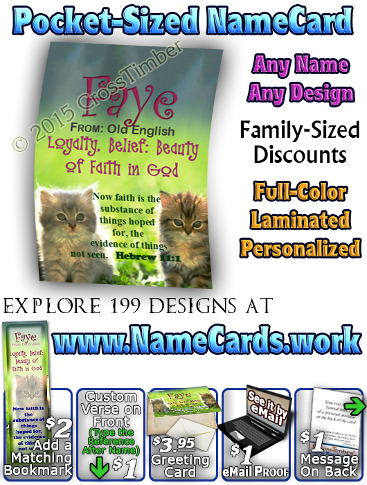 PC-AN51, Name Meaning Card, Wallet Sized, with Bible Verse faye cute fuzzy kittens cats