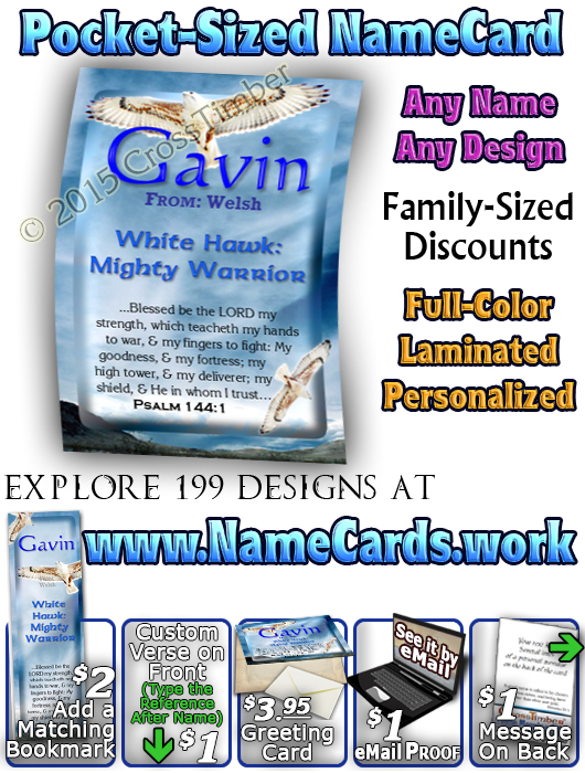 PC-AN52, Name Meaning Card, Wallet Sized, with Bible Verse  white hawk Gavin bird